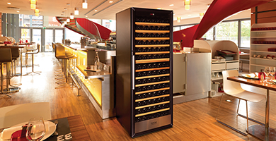 SEuroCave 3000 serie - Maturing or serving wine cabinet