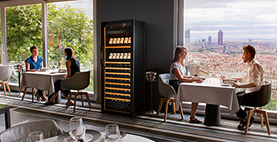 EuroCave 6000 serie - 1-temperature, 2-temperatures or multi-temperatures wine cabinets to mature or serve your wine. Optional high-end equipments.